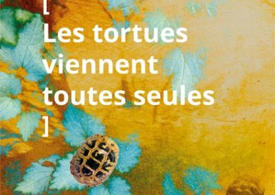 graphisme Affiche TORTUE